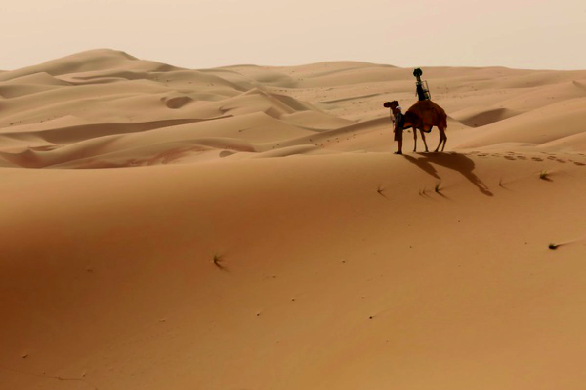 El camello que trabaja para Google